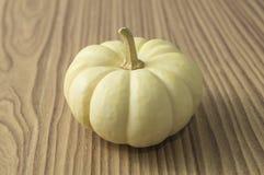 Fresh Pumkin. Fresh and natural white pumkin royalty free stock images