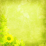 Fresh nature background texture Stock Images