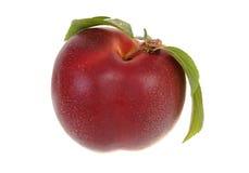 Fresh nectarine Royalty Free Stock Image