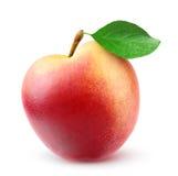 Fresh nectarine peach. Isolated on white stock photography