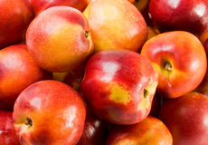 Fresh nectarines Stock Images