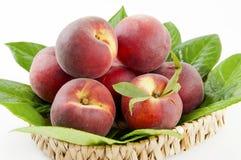 Fresh nectarines Royalty Free Stock Images