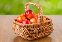 Fresh nectarines in the basket Stock Images
