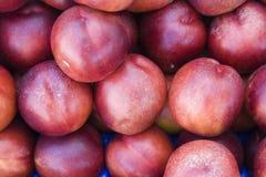 Fresh nectarines on croatian market Stock Images