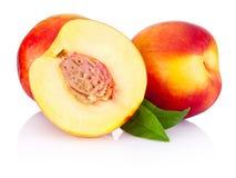 Fresh nectarines fruit isolated on white background Royalty Free Stock Photos