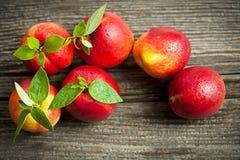 Fresh nectarines Stock Photography