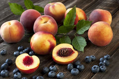 Fresh nectarines and peaches Royalty Free Stock Photography