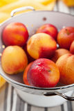Fresh nectarines and plums Stock Photography