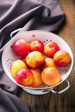 Fresh nectarines and plums Royalty Free Stock Images