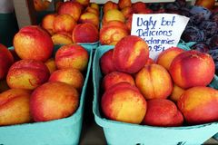 Fresh nectarines in small paper buckets. stock image