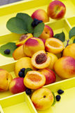 Fresh nectarines on a tray Royalty Free Stock Photography