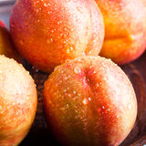 Fresh nectarines with water drops Stock Photography