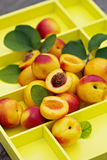 Fresh nectarines on yellow tray Stock Photo