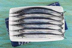 Fresh needlefish for a healthy diet Royalty Free Stock Photos