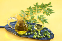 Fresh Neem Leaves with Oil.  Stock Photo