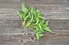 Fresh nettle leaf on wooden background Royalty Free Stock Photography