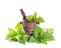 Fresh nettle leaves with a mortar Stock Photo