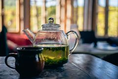 Fresh Nettle And Mint herbal Brewed Medicine Tea In Authentic Ho Royalty Free Stock Image
