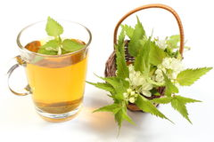 Fresh nettle in wicker basket and cup of beverage Royalty Free Stock Photo