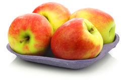 Fresh new apple cultivar called Pink Lady Royalty Free Stock Image