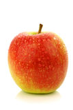 Fresh new apple cultivar called Pink Lady Royalty Free Stock Photos