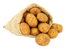 New Potatoes In A Brown Paper Bag. Fresh new potatoes in a brown paper bag isolated on a white background Royalty Free Stock Photography