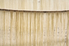 Fresh Noodles Hanging. Fresh hand-made noodles hang in the sun to dry before packaging Royalty Free Stock Photo