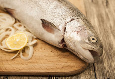 Fresh Norwegian rainbow trout with lemon and onions on a wooden background.  Royalty Free Stock Photo