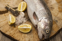 Fresh Norwegian rainbow trout with lemon and onions on a wooden background.  Royalty Free Stock Photography
