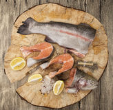 Fresh Norwegian rainbow trout steaks. With lemon lies on a wooden background Stock Images