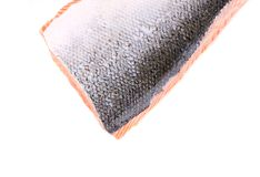 Fresh Norwegian salmon closeup. Royalty Free Stock Images