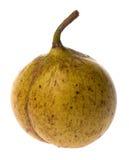 Fresh Nutmeg Isolated Royalty Free Stock Photos