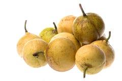 Fresh Nutmegs Isolated Royalty Free Stock Image