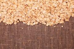 Fresh oats Royalty Free Stock Photo