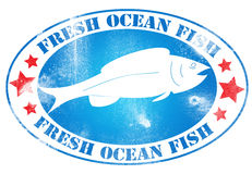 Fresh ocean fish Royalty Free Stock Photography