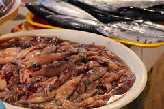 Fresh octopuses and fishes in a market. Philippines Stock Photo