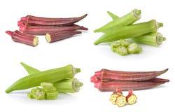 Fresh okra or green roselle on white background Royalty Free Stock Image