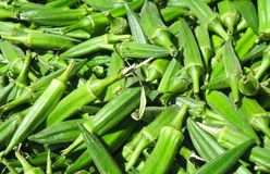 Fresh Okra Stock Photo