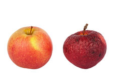 Fresh and old apple Royalty Free Stock Photography