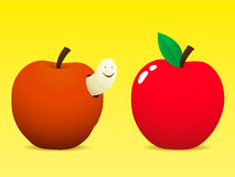 Fresh and old apple with worm. Fresh and old rotting apple with worm vector illustration
