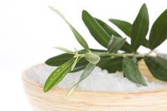 Fresh olive branch and bath salt Stock Photography