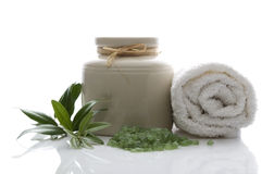 Fresh olive branch and bath salt. spa Royalty Free Stock Images