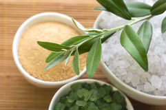 Fresh olive branch and bath salt. spa Stock Photography
