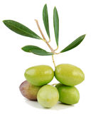 Fresh olives. Macro  on white background Royalty Free Stock Image