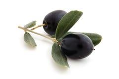 Fresh olives. Royalty Free Stock Photos