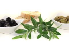 Fresh olives with bread Stock Images