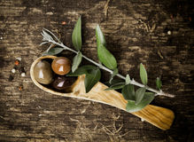 Fresh olives in an olive wood spoon Royalty Free Stock Images