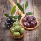 Fresh olives Stock Photography
