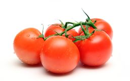 Fresh omatoes Royalty Free Stock Photo