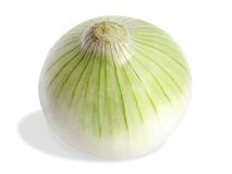 Fresh onion. Young onion isolated on white (clipping path included Royalty Free Stock Images